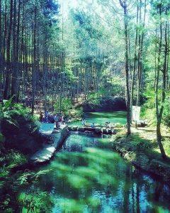 Wisata Kampung Ciherang – IG 8